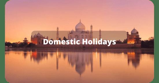 Domestic Holidays